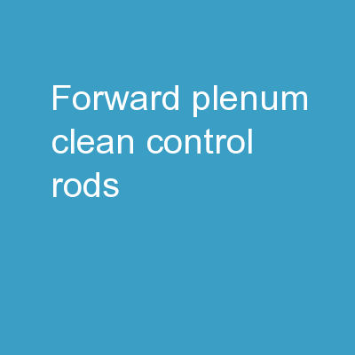 Forward Plenum Clean control rods