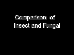 Comparison  of  Insect and Fungal