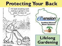 Protecting Your  Back Lifelong