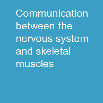 Communication Between the Nervous System and Skeletal Muscles