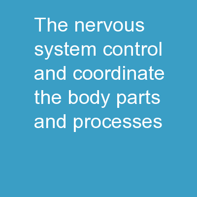 The Nervous System Control and coordinate the body parts and processes.
