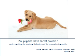 Do  puppies have secret powers?