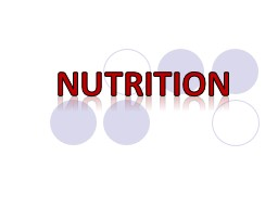 """NUTRITION What does """"You are"""