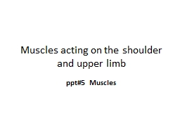 Muscles acting on the shoulder and upper limb PowerPoint PPT Presentation