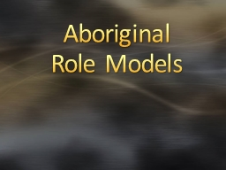 Aboriginal  Role Models B