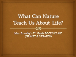 What Can Nature Teach Us About Life?