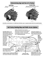 Fall Turkey Hunting Regulations OutdoorNebraska