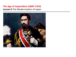 The Age of Imperialism (1800–1914)