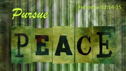 Pursue Hebrews 12:14-15 What is Necessary to Pursue Peace