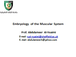 Embryology   of the Muscular