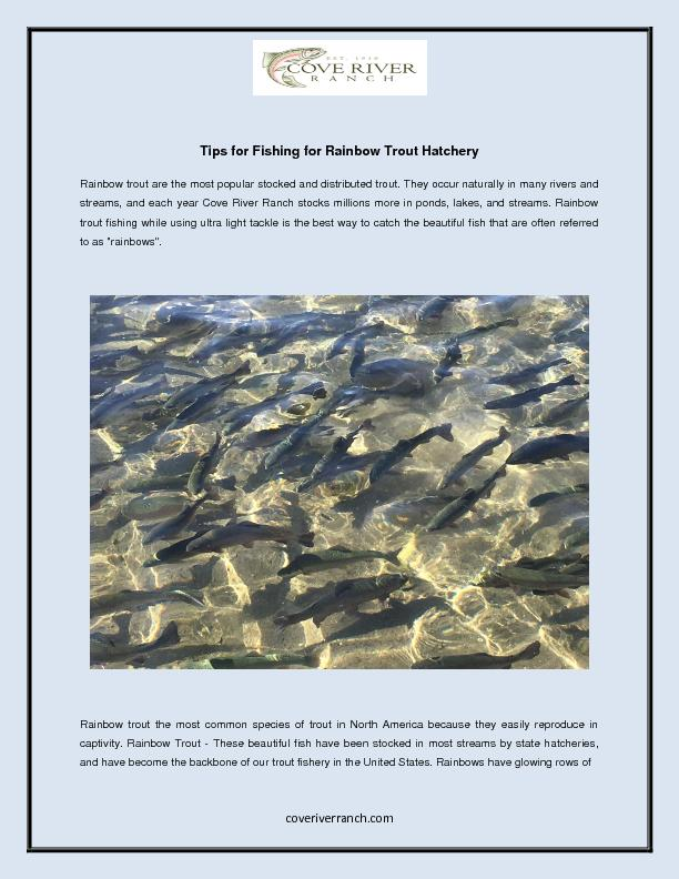 Tips for Fishing for Rainbow Trout Hatchery