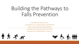 Building the Pathways to Falls Prevention