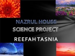 REEFAH TASNIA SCIENCE PROJECT