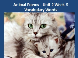 Animal Poems-  Unit 2 Week 5