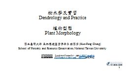 ??????  Dendrology and Practice
