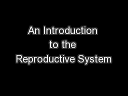 An Introduction to the Reproductive System