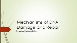 Mechanisms of DNA Damage and Repair