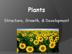 Plants  Structure, Growth, & Development