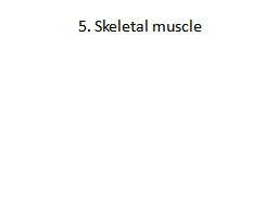 5. Skeletal muscle The role of the neocortex is to store and manipulate memories