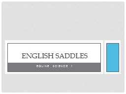 Equine Science 1 English Saddles
