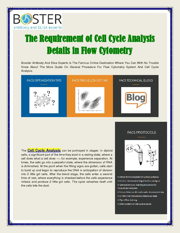 Cell Cycle Analysis