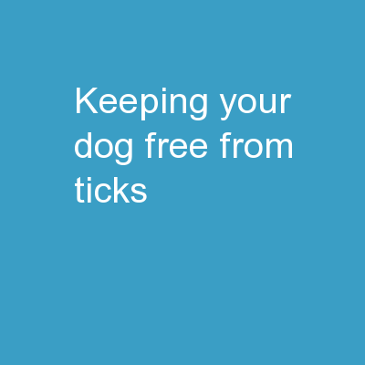 KEEPING YOUR DOG FREE FROM TICKS