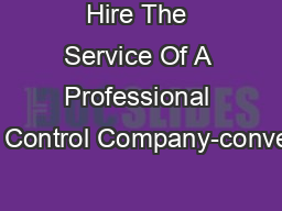 Hire The Service Of A Professional Pest Control Company-converted