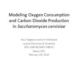 Modeling Oxygen Consumption and Carbon Dioxide Production in