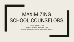 Maximizing  school counselors