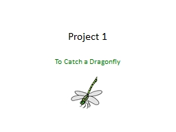 Project 1 To Catch a Dragonfly