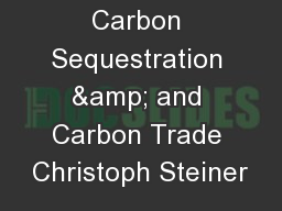 Charcoal Carbon Sequestration & and Carbon Trade Christoph Steiner