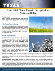 Issue Brief Texas Electric Deregulation Nuts and Bolts