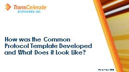 November 2018 How  was the Common Protocol Template  Developed and What Does it Look Like?