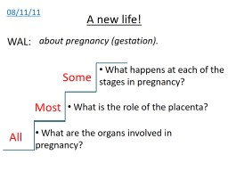 08/11/11 A new life! about pregnancy (gestation). WAL: All Most