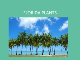 FLORIDA PLANTS What is a native plant? Plants native to Florida are plants that were here before the arrival of the Europeans PowerPoint PPT Presentation