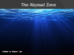 The Abyssal Zone Created by Shalynn Lee The Abyssal Zone