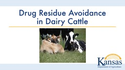 Drug Residue Avoidance in Dairy Cattle