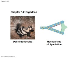 Figure  14.0-2 Chapter 14: Big Ideas