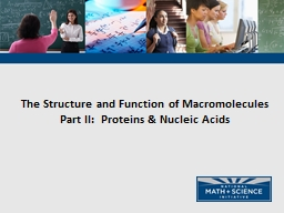 The Structure and Function of Macromolecules PowerPoint PPT Presentation