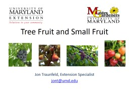 Tree Fruit and Small Fruit PowerPoint PPT Presentation
