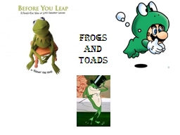 Frogs and Toads Toads