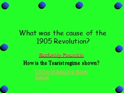 1 What was the cause of the 1905 Revolution?