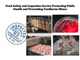 Food Safety and Inspection Service Protecting Public Health and Preventing Foodborne Illness