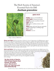 e Herb Society of Americas Essential Facts for Dill An