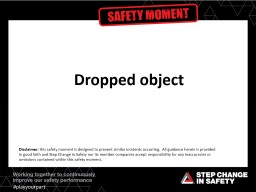 More than a dropped object