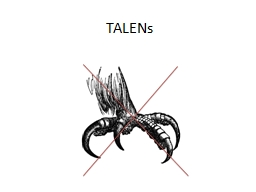 TALENs Transcription activator-like effectors (TALEs) are produced by plant pathogenic bacteria in the genus