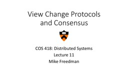 View Change Protocols and Consensus