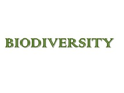 BIODIVERSITY  	Our