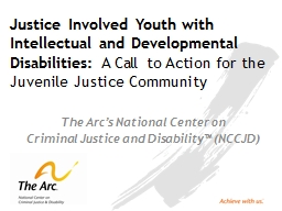 Justice Involved Youth with Intellectual and Developmental Disabilities: