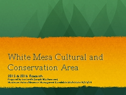 White Mesa Cultural and Conservation Area